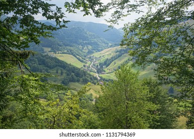 valley, Black Forest, Germany