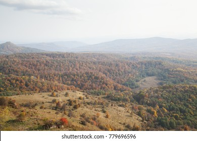 valley covered with yellow forest in the fall with sky