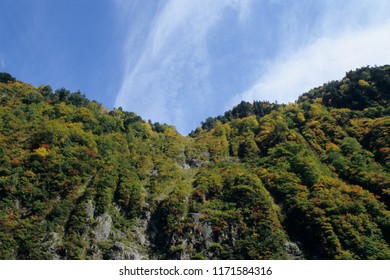 The valley of the foliage of Kurobe Gorge