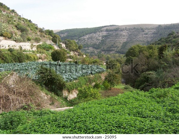 A valley in Iblei Mountains, Ragusa, Sicily. Vallata nei Monti Iblei, Ragusa, Sicilia.