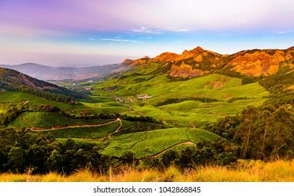 Valley in Kulukumalai in Munnar, Kerala, India