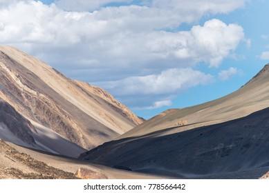 Valley in leh