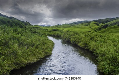 The Dzükou Valley is a valley located at the border of the states of Nagaland and Manipur. This valley is well known for its natural environment, seasonal flowers and flora and fauna.