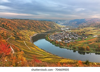 Valley of the Moselle river near Traben-Tarbach (quarter Wolf), in Rhineland-Palatinate, Germany, Autumn landscape