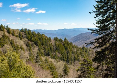 Valley overlook in the Great Smoky Mountains