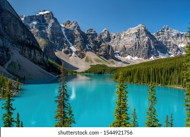 VALLEY OF THE TEN PEAKS TOWERING OVER THE INCREDIBLE TURQUOISE BLUE OF MORRAINE LAKES CLASSIC VIEW WITH PINES JUTTING INTO FOREGROUND - BANFF NP
