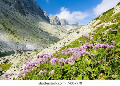 valley under Prielom, Vysoke Tatry (High Tatras), Slovakia