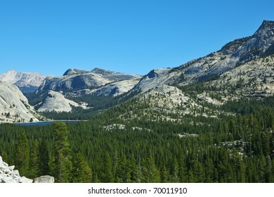 Valley in well-known mountain park Yosemite. Pines and mountains