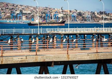 VALPARAISO, CHILE - February 2019: Pier with sea gulls near the fish market at Valparaiso, Chile