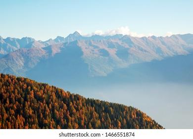 Valtellina (IT) - Autumn view with mist