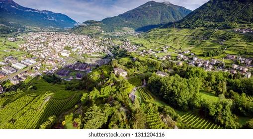 Valtellina (IT) - Grumello vineyards near Sondrio