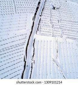 Valtellina (IT) - Stepped vineyard with fresh snow