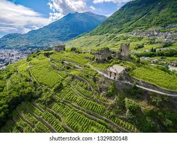 Valtellina - Sondrio (IT) - Castel Grumello with vineyards