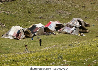 VAN, TURKEY — MAY 5, 2011. A woman and her children walk near tents at a semi-nomadic shepherds' camp set amid spring wildflowers on a rocky, grass-covered hillside in Eastern Anatolia.
