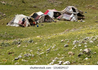 VAN, TURKEY — MAY 5, 2011. Two young boys stand beside tents at a semi-nomadic shepherds' camp set amid spring wildflowers on a rocky, grass-covered hillside in Eastern Anatolia.