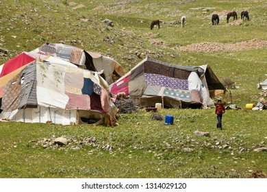 VAN, TURKEY — MAY 5, 2011. A young boy walks near tents at a semi-nomadic shepherds' camp while horses graze amid spring wildflowers on a rocky, grass-covered hillside in Eastern Anatolia.