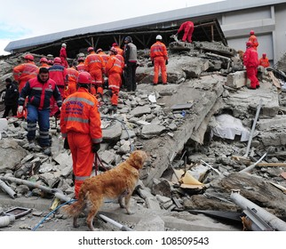VAN, TURKEY - NOV 10: After the earthquake in Van, rescue teams are searching for earthquake victims with the help of rescue dogs. Van, Turkey. November 10, 2011
