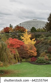 VANCOUVER 2012: Fall color at Queen Elizabeth Park with Bloedel Conservatory in the background