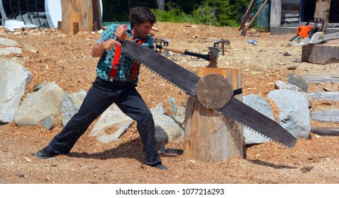 VANCOUVER BC CANADA JUNE 27 2015: Log sawing at the Grouse Mountain Lumberjack demonstration features a crew of champion performers showcasing their skills atop Grouse Mountain.