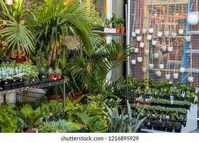 Vancouver, BC/Canada - 10/22/2018: plants filled entrance at Granville Island market