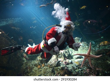 VANCOUVER, CANADA - NOVEMBER 27, 2014: Scuba diving Santa Claus swims amongst the fish in the tank at the Vancouver Aquarium to mark the beginning of Christmas season, Nov.27, 2014, Vancouver, Canada.