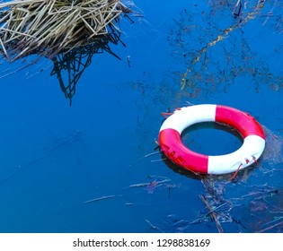 Vandalised red and white lifebuoy thrown into the River Cherwell at Banbury. Caught on weed by reed bed, with tree reflected on water surface. Mindless social behaviour. England