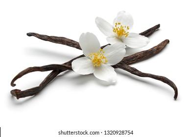 Vanilla bean with jasmine flowers, isolated on white background