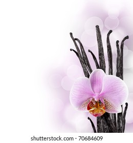 Vanilla beans and orchid flower against bokeh background