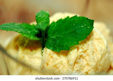 Vanilla Ice Cream and Mint
