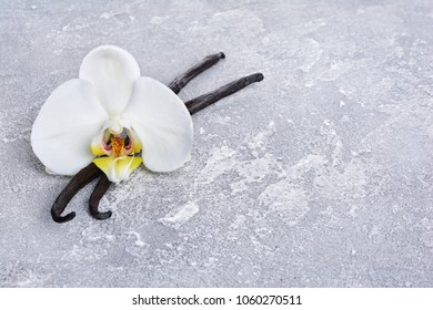 Vanilla pods with a flower as ingredient for baking on gray concrete background
