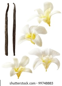 Vanilla pods and flower on white background