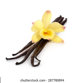 Vanilla pods with one yellow orchid. Isolated on white background.