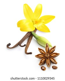Vanilla pods, star anise seed and orchid flowers isolated on white background