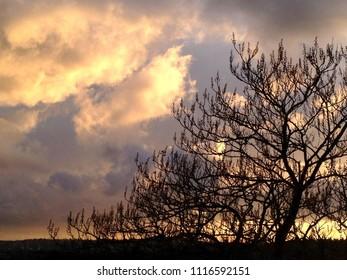 Vanilla sky landscape