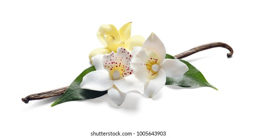 Vanilla sticks and flowers on white background