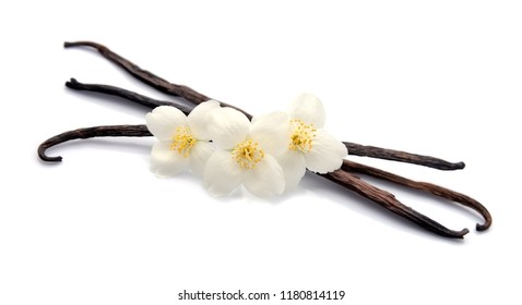 Vanilla sticks with flowers on white backgrounds.