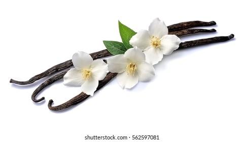 Vanilla Sticks mit Blumen auf weißem Hintergrund.