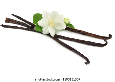 Vanilla sticks with white flower isolated on white background