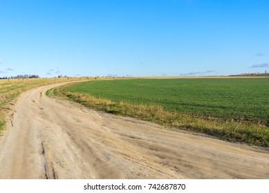 Vanishing dirt road through  vast farm field after harvesting with hay cocks