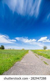 Vanishing footpath at blossom field under blue sky, summertime nature background