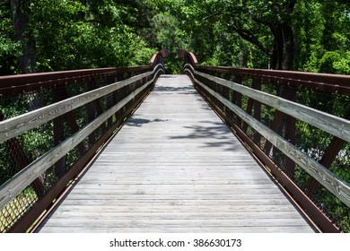 vanishing point of pathway leading into lush, green forest