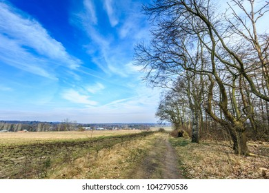 Vantage point in Northern direction from Laarsenberg to Barneveld with fields and forests and trees against a partial veil blue sky with clouds