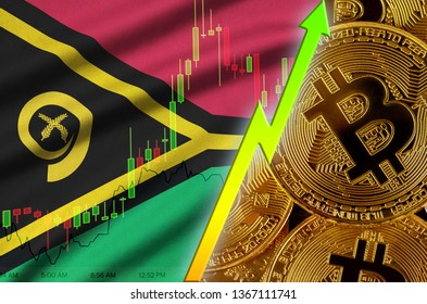 Vanuatu flag and cryptocurrency growing trend with many golden bitcoins
