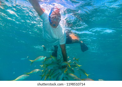 Varadero Beach, Cuba:  A middle age man snorkeling on the in open sea in the transparent water of the famous tourist attraction