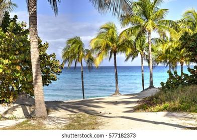 Varadero beach in a perfect summer day, Cuba.