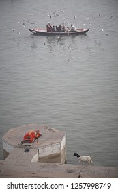 Varanasi, India, January 2009. A boat surrounded by seagulls passes in front of a sadhu sleeping in a Ghat of the Ganges River.