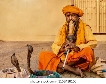 Varanasi, India - November 12, 2015: An Indian snake charmer is playing a traditional musical instrument called a pungi, hypnotizing two king cobra snakes in an ancient cultural ritual.