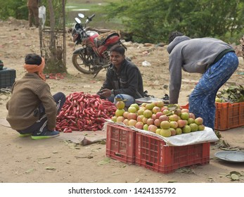 Varanasi, Uttarpradesh, India, February 27, 2019: Fruit seller displaying freshly harvested guava and chillies by the roadside, on the way to Kashi.