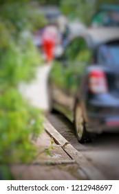 The Varanus salvator emerge from Sanitary Sewer at roadside in Bangkok Thailand. Varanus salvator focus selected image.