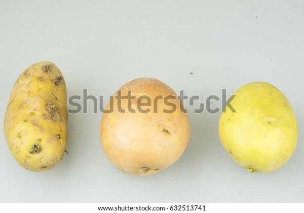 varieties of potatoes